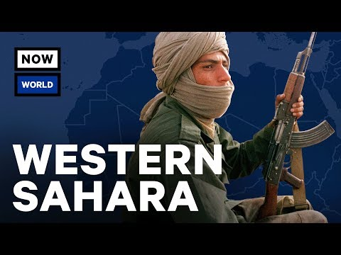 What's Going On In Western Sahara? | NowThis World