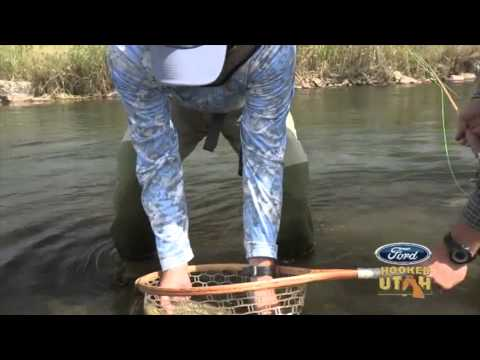 Brown Trout & Bamboo Fly Rods