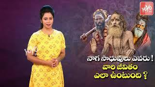 Mysterious & Secret Life About Naga Sadhu's | Naga Sadhuvula Life Style | Agohras Life | YOYO TV