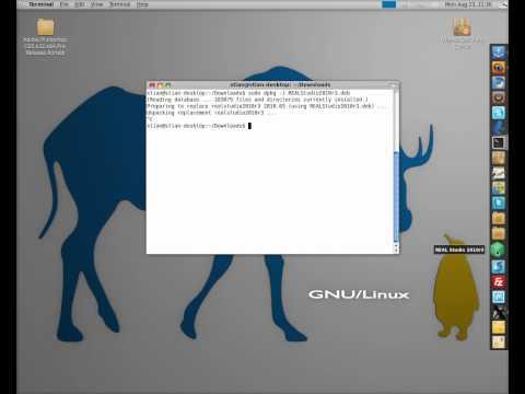 Ubuntu - Installing/Uinstalling .deb Files (How to)