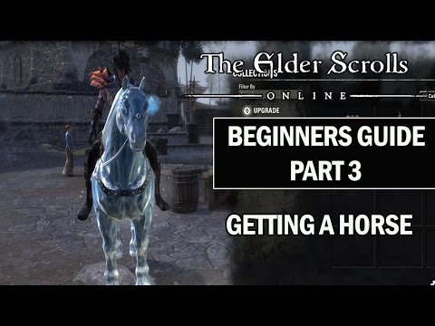 ESO Beginners Guide to Success Part 3 Getting a Horse in The Elder Scrolls Online