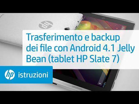 Trasferimento e backup dei file con Android 4.1 Jelly Bean (tablet HP Slate 7)