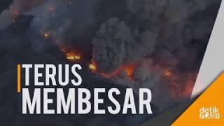 Kebakaran Hutan di California Menuju Kota Los Angeles