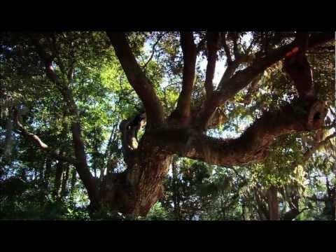 Kiawah Island Golf Resort - Official Best Golf Resort - South Carolina 2012