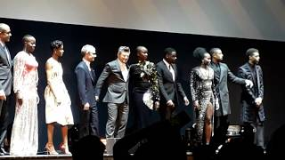 The cast of Black Panther at the European premiere in London
