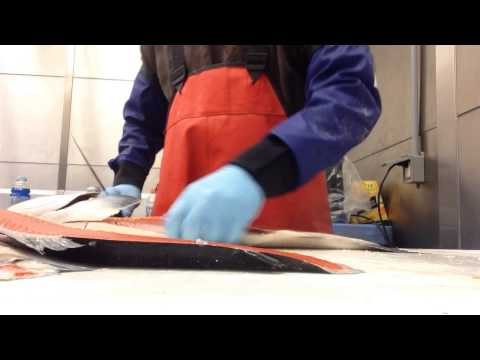 How to cut salmon, fastest knife on the west coast