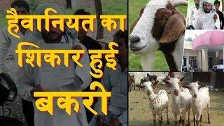 Bakri का Rape | समाज की हैवानियत की हद नहीं | Pregnant goat dies after 8 men gang-rape it in Haryana