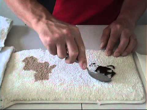 how to clean up a carpet spill video
