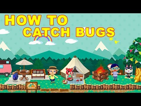 Animal Crossing Pocket Camp: How to Catch Bugs