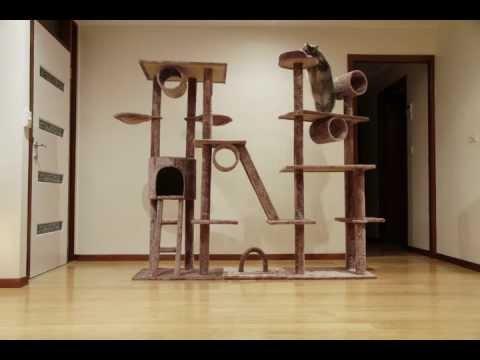 Pepi's tower of terror (cat tree construction)
