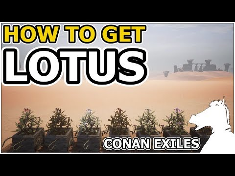 How to get LOTUS | CONAN EXILES