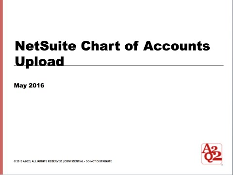 #42 | NetSuite Chart of Accounts Upload