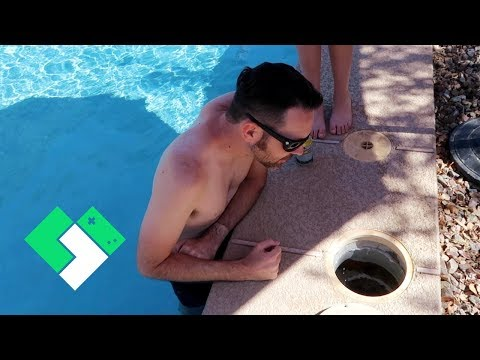 There's Something ALIVE In Our Pool! | Clintus.tv
