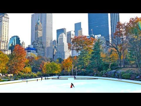 Central Park Walk, Manhattan Tourist Attraction, New York City, 4K Video