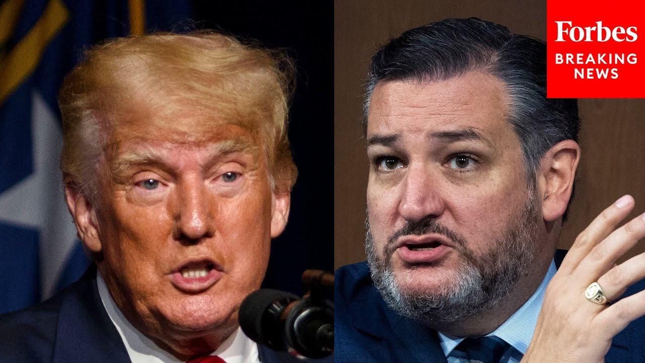 """""""Trump Drove Senate Democrats Crazy"""" Ted Cruz Rails Against Partisanship As 3 Of His Amendments Fail"""