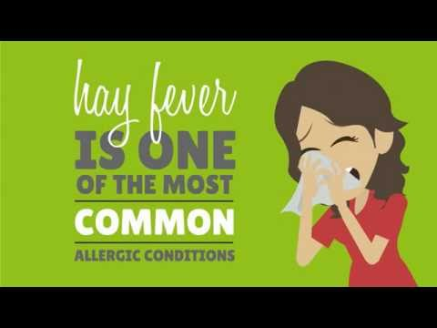 Hay Fever Symptoms, Remedies & Treatments: What's behind the summer's biggest bugbear?