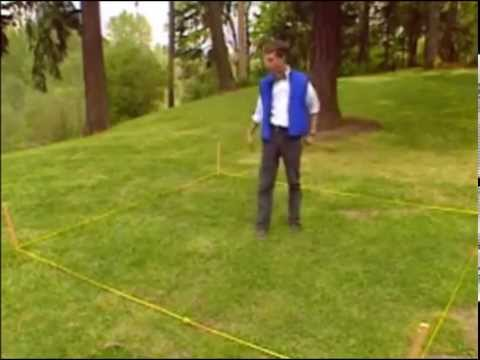 How To Find A Four Leaf Clover (with Bill Nye)
