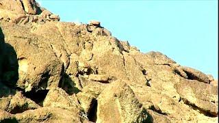 هذا ما وجدناه بمتارس الحوثيين بعقبة مالح مديرية ناطع محافظة البيضاء اليمن yemen