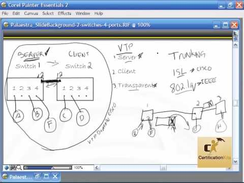 Cisco CCENT and CCNA Video Introducing Switching with VLANs