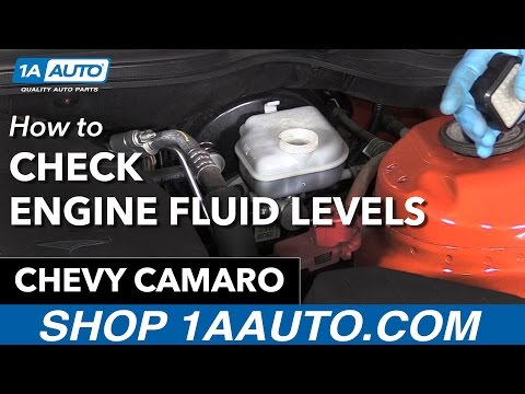 How to Check your Engine Fluid Levels 11 Chevy Camaro