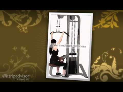 Gym Equipment In India   Syndicate Gym Equipment India .mp4