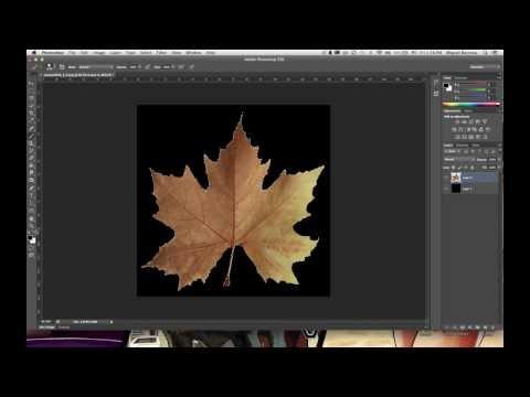 Blender Tutorial: Alpha Mapping 2.68