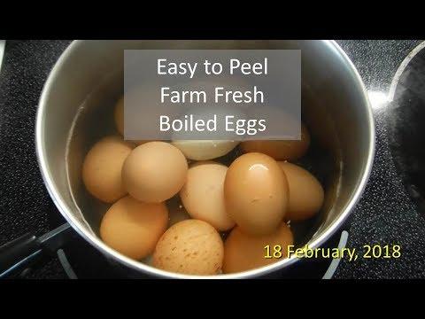 Easy to Peel Farm Fresh Boiled Eggs
