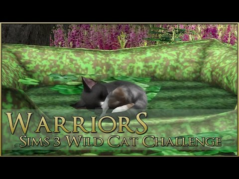Heartbreak in the Nursery 🌿 Warrior Cats Sims 3 Legacy - Episode #95