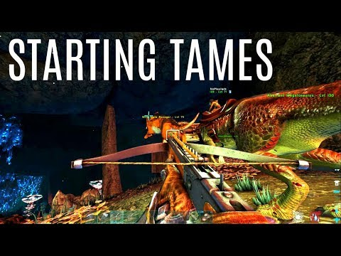 STARTER TAMES and Metal Base - Official 6 Man Tribe - ARK Survival
