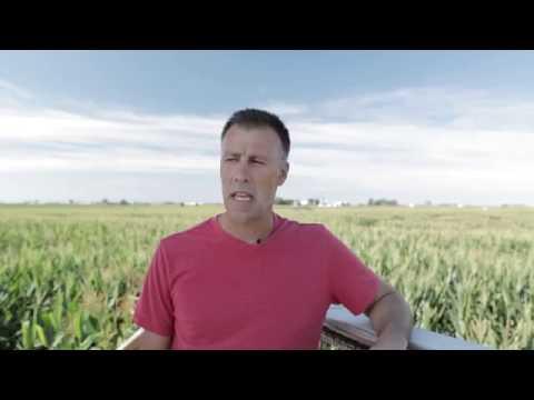 Rader Family Farms Corn Maze