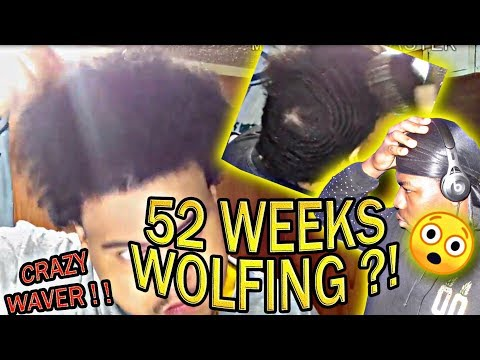 52 WEEKS WOLF COMBING OUT 360 WAVES REACTION !!!