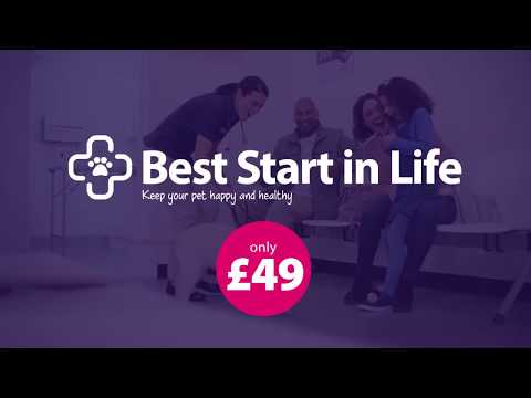 Vets4Pets Best Start in Life TV Advert - May 2018