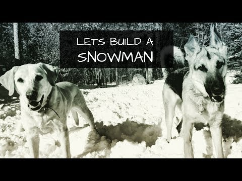 How to Build a Large Snowman | German Shepherd and Labrador Retriever Watch
