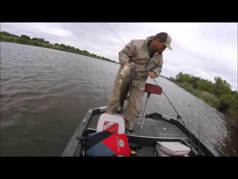 Big Bass On A Jig