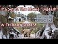 "Visiting the set of Tim Burton's Movie ""Big Fish"" || Town of Spectre"