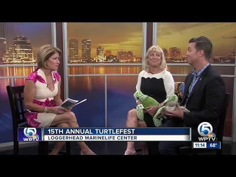 15th annual TurtleFest on March 24