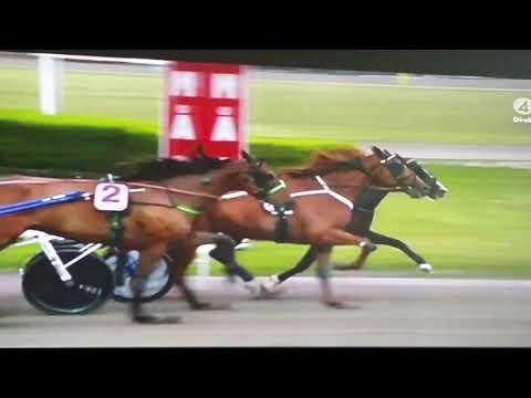 V75 Gävle DD 1 Racing Mange Vägen till Elitloppet