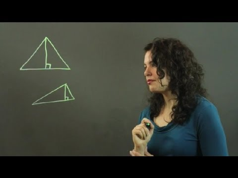 How to Find the Perpendicular Line Opposite the Vertex in a Tr... : Trigonometry, Statistics & More