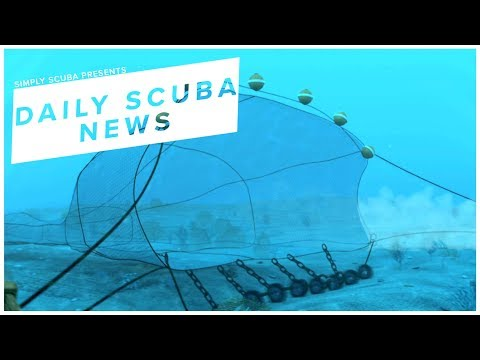 Daily Scuba News - 560 Billion Dollars Wasted Due To Destructive Fishing