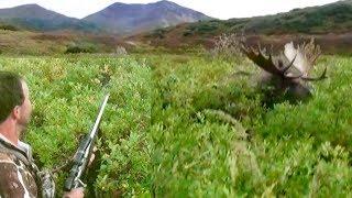 GIANT Alaskan Moose RUNS OVER hunter!!!!! The Journey Part 2