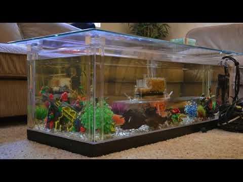 Coffee Table Design Aquarium