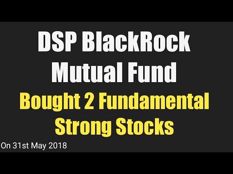 DSP BlackRock Mutual Fund bought 2 Fundamental Strong Stocks