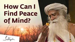 Download Your Peace in Your Control | Sadhguru Video