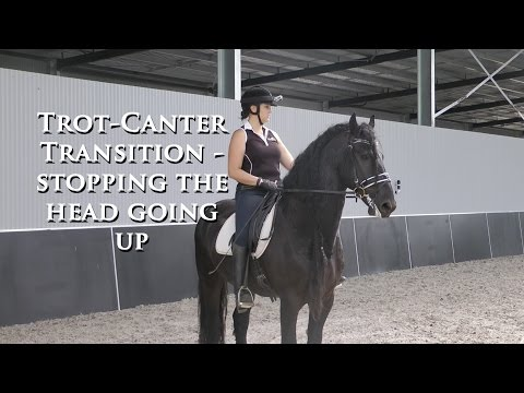 How to Stop Head Coming Up in Trot to Canter Transition - Dressage Mastery TV Ep61