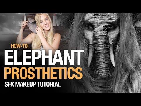 How-to: Elephant prosthetics tutorial