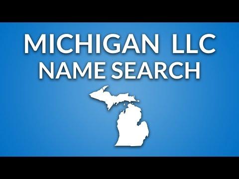 Michigan LLC - Name Search
