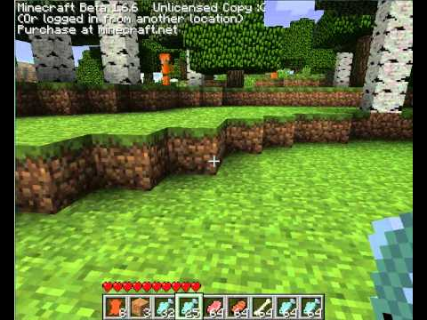 Minecraft: Tiger mod gone wrong :/