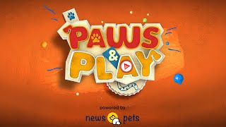 Paws & Play: New Show Announcement