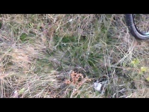 Wild Camping on Snake Land