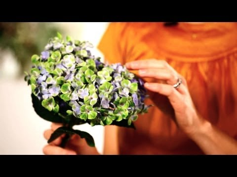 How to Make Hydrangeas Last Longer | Wedding Flowers